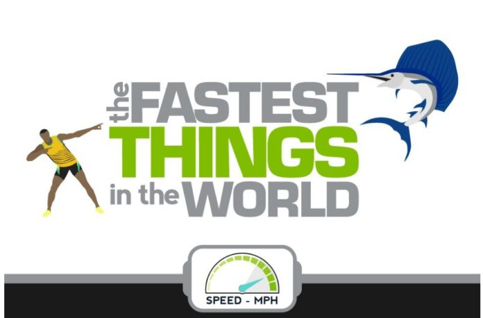 oasdom.com 18 fastest things in the world