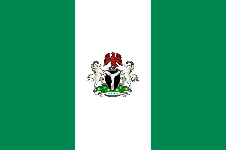 Nigerian profile - Nigerian flag