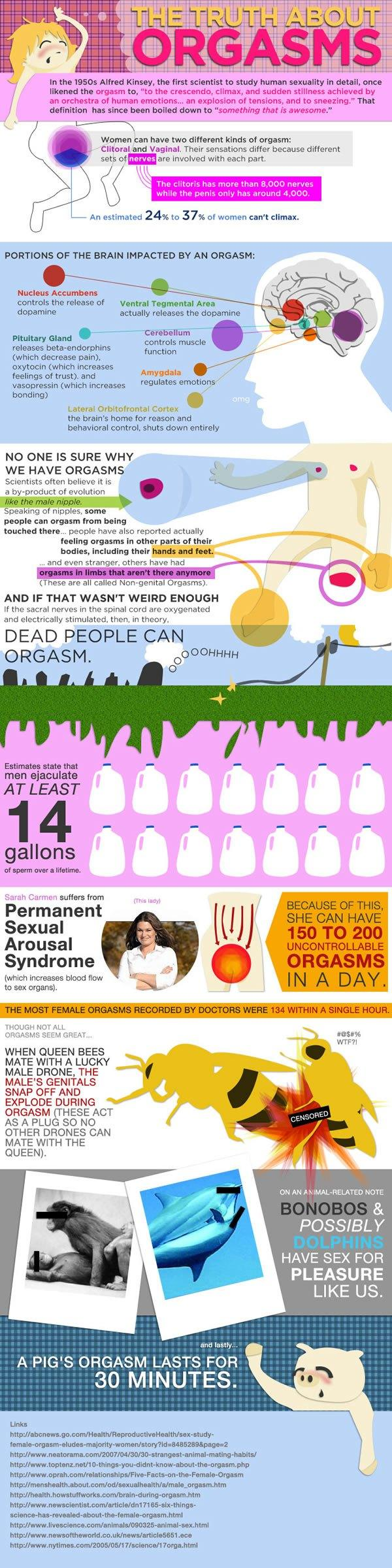 oasdom.com - the truth about orgasms