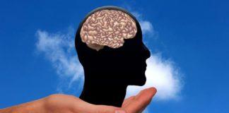 Oasdom.com A new map of the human brain