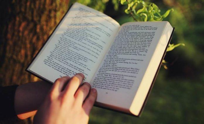Oasdom.com Your brain on books