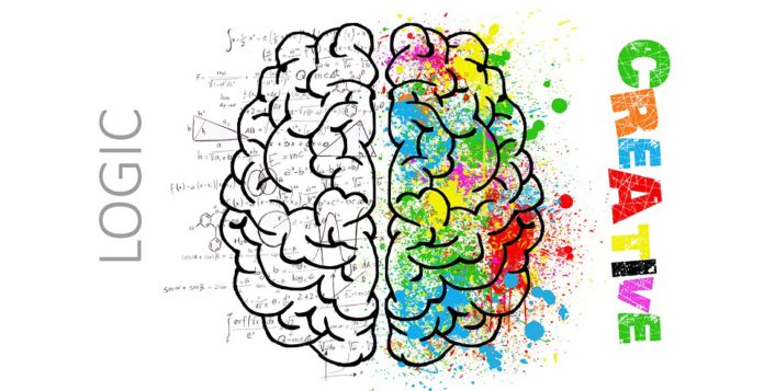 "You've probably heard about left brained vs. right brained people. Have you ever asked, ""What side of your brain do you use?"" Learn more in this article"