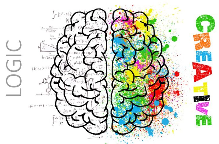 """You've probably heard about left brained vs. right brained people. Have you ever asked, """"What side of your brain do you use?"""" Learn more in this article"""