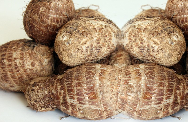 coco yam popular foods in Nigeria