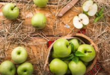 There are over 7,000 Apple species out there and Apple trees take four to five years to produce their first fruit. Most apples are still picked by hand in the fall. Apple varieties range in size, taste etc. Here are 37 most common species
