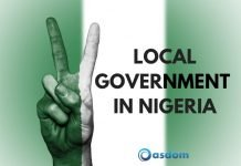 Oasdom structure and functions of local government in Nigera how many local government do we have in Nigeria today