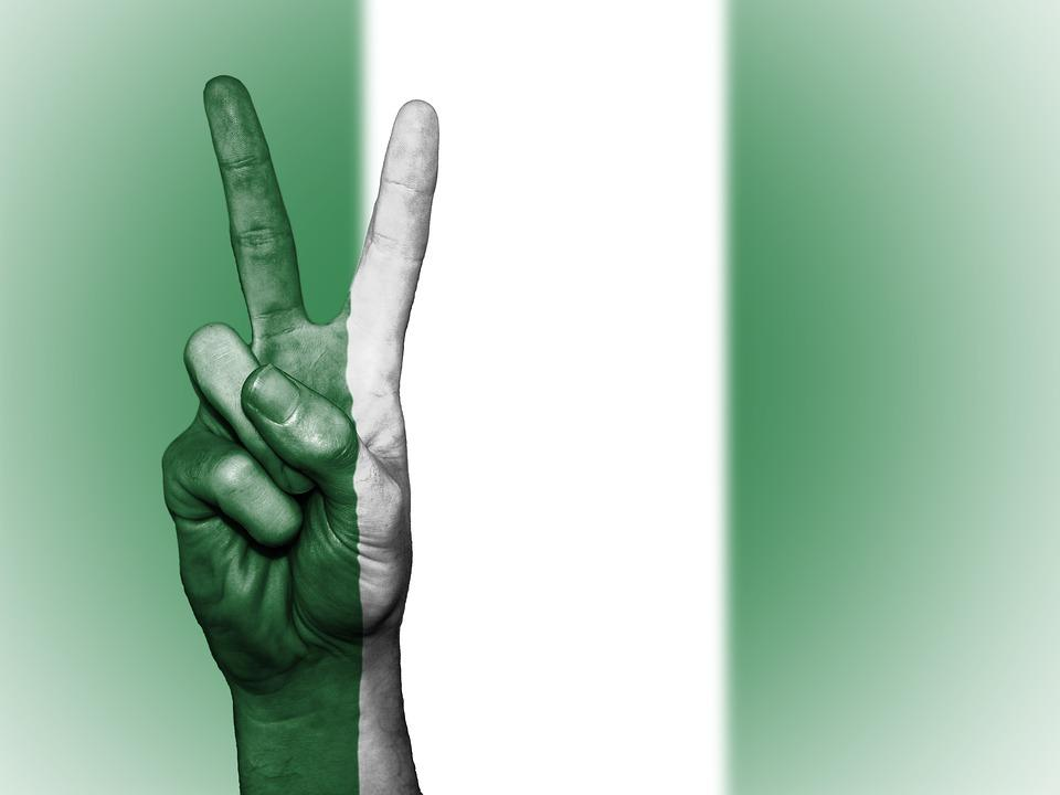 what is a local government in Nigeria