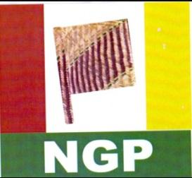 New generation party of Nigeria - political parties chairman