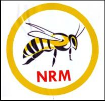 newly registered political parties in nigeria 2018 - National Rescue Movement NRM