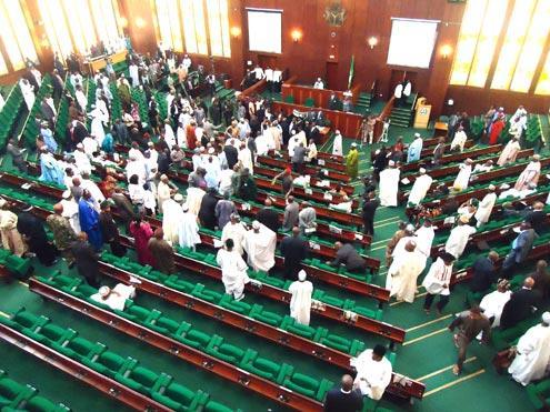 house-of-representative nigerian politics and nigerian government