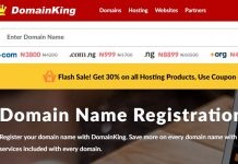 domainking hosting and registration