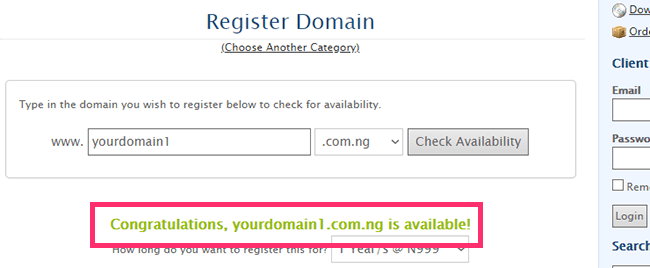 domainking check domain availability