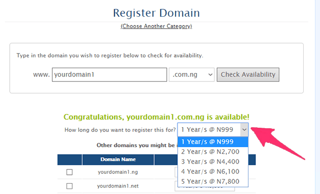 select billing cycle at domainking.ng
