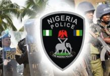 Oasdom.com Nigerian police ranks and salary structure dpo duties 1