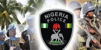 all you need about the Nigerian police ranks and symbols