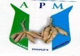 Allied Peoples Movement Political party in Nigeria