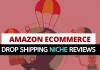 Amzaon Ecommerce Drop Shipping Niche Reviews