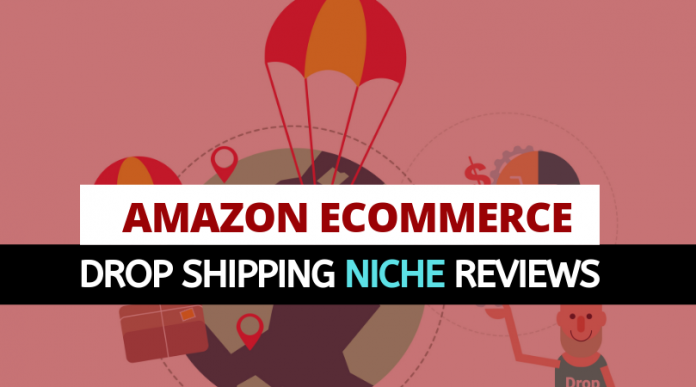 Amzaon Ecommerce Drop Shipping Niche Reviews