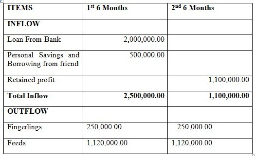 Projected cash flow statement - business plan sample template