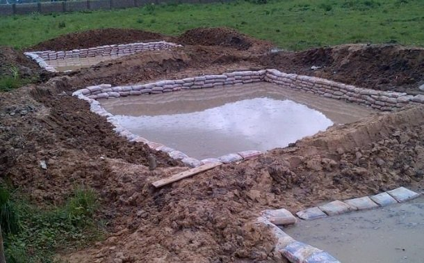 Fish pond with cat fish juveniles - how to start fish farming in nigeria