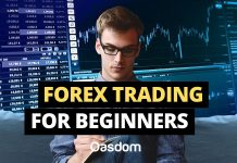 Ultimate Forex trading for beginners guide