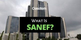 What Is SANEF - Shared Agent Network Expansion Facility