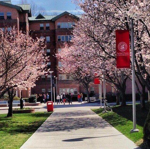 Sacred-Heart-University degree in business