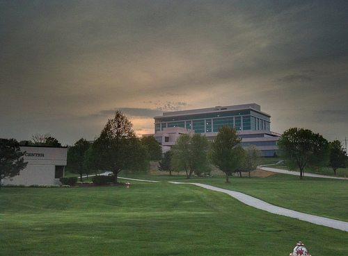 Top Online Doctoral Programs In Business - Bellevue University