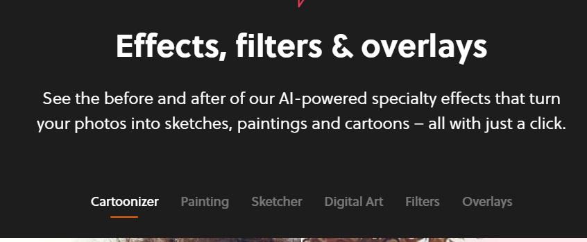 Logo design tools - colorinch