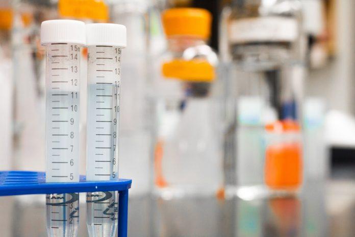 Drug safety testing